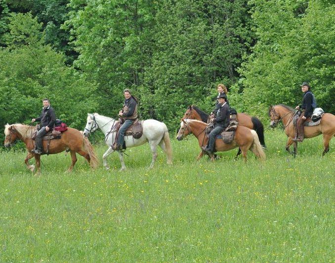 Trekking a cavallo lungo la catena del baldo e il garda trento