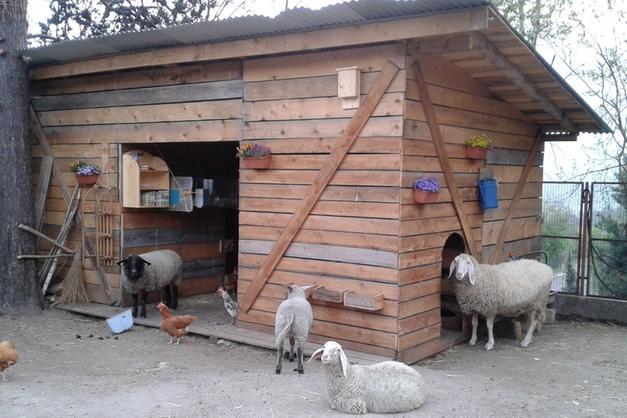 L happy ranch la fattoria didattica di anffas a cognola for Piani di fattoria ranch